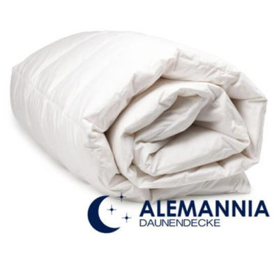 Afbeeldingen van de Alemannia Aachen